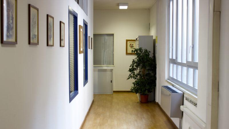 Immagine Gallery